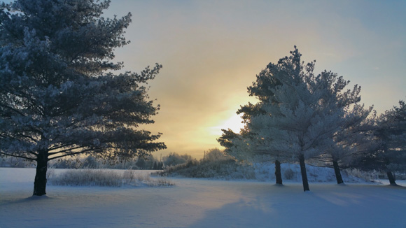 Winter snowscape with sunrise